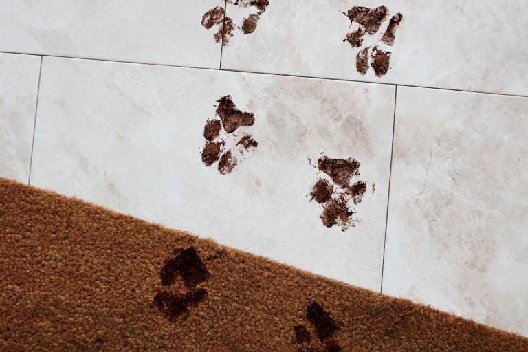 cara membersihkan lantai keramik cleanipedia. Black Bedroom Furniture Sets. Home Design Ideas
